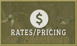 Rates and Packages